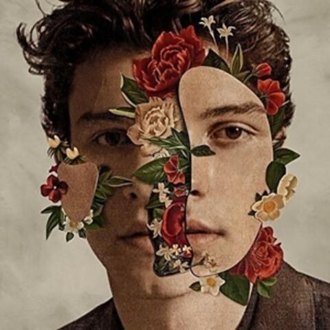 Shawn Mendes (Deluxe) von Shawn Mendes - CD jetzt im Digster Shop